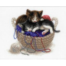 Kit with yarn - Kittens In A Basket