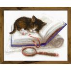 Kit with yarn - Kitten on the Book