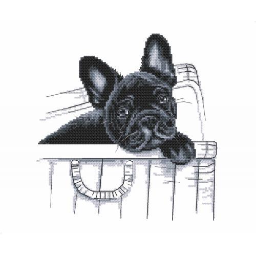 Tapestry Aida French Bulldog Here I Am