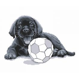 Cross stitch kit - Labrador - Play with me