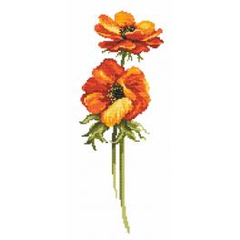 Cross stitch kit - Anemone