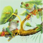 Kit with mouline and printed background - Frogs