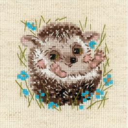 Kit with yarn - Little hedgehog