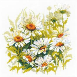 Cross stitch kit - Chamomiles