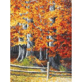 Cross stitch kit - Autumnal beeches