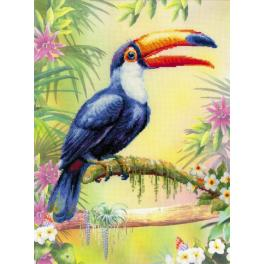 RIO 0077PT Cross stitch kit with printed background - Toucan