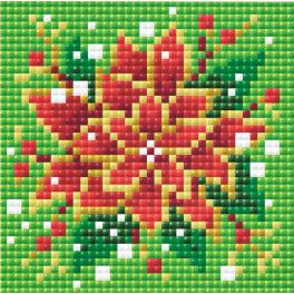 RIO AM0019 Diamond painting kit - Poinsettia