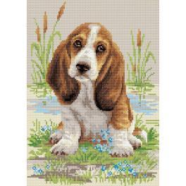 RIO AM0005 Diamond painting kit - Basset puppy
