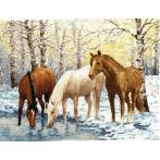 Cross stitch kit - Horses near the river