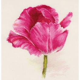 Cross stitch kit - Tulip. Crimson glow