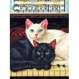 Cross stitch kit - Ebony and ivory cat
