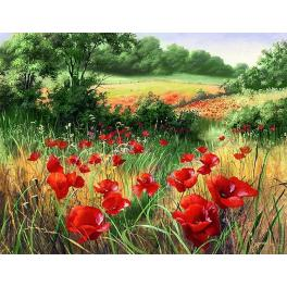 Diamond painting kit - Poppy field