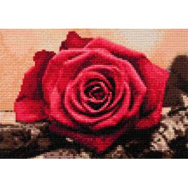 ZTDE 4631 Diamond painting kit - Red rose