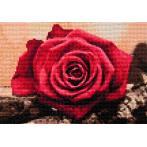 ZTDE 4631 Diamond painting kit - Red rose