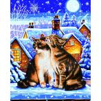 DD9.012 Diamond painting kit - Stars and whiskers