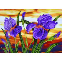 DD9.016 Diamond painting kit - Iris sunset