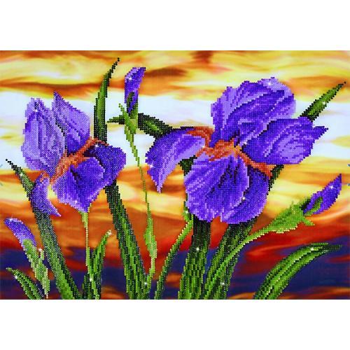 DD9.016 Diamond painting kit - Iris sunset