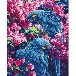Diamond painting kit - Blue parrots