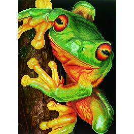 DD7.031 Diamond painting kit - Green tree frog