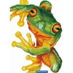 DD7.031 Diamond painting kit - Green tree frog