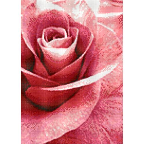WD019 Diamond painting kit - Pink rose