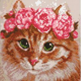 Diamond painting kit - Cat bridesmaid