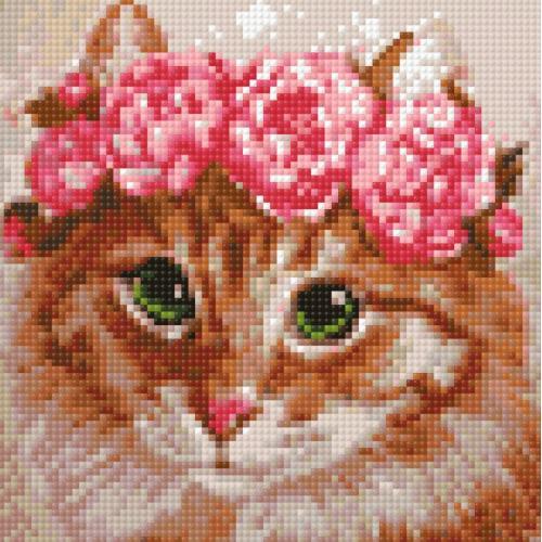 WD270 Diamond painting kit - Cat bridesmaid