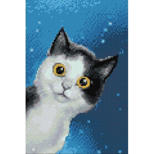 WD195 Diamond painting kit - Cat's curiosity