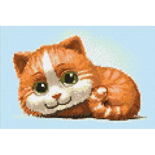 WD194 Diamond painting kit - Ginger cat