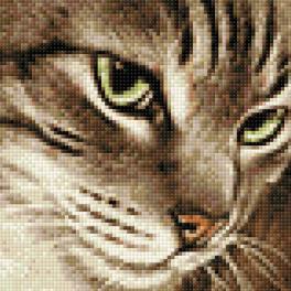 Diamond painting kit - Mysterious cat