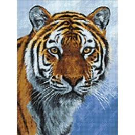 WD309 Diamond painting kit - Tiger