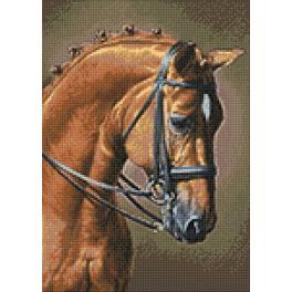 Diamond painting kit - Horse