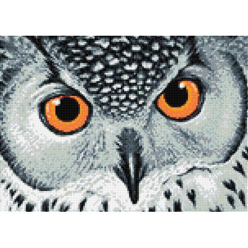 Diamond painting kit - Owl's look