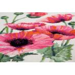 Cross stitch kit - Pink poppies