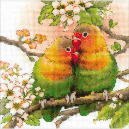 Kit with yarn - Lovebirds