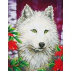 DD7.007 Diamond painting kit - White wolf