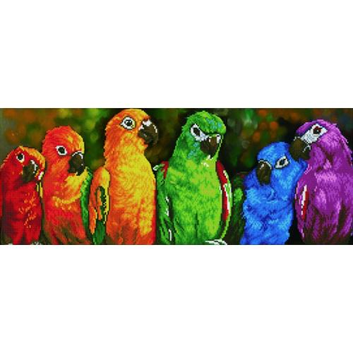 DD10.025 Diamond painting kit - Rainbow parrots