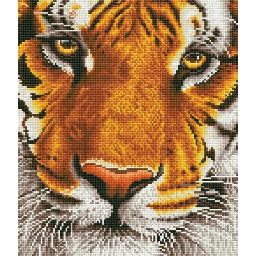 DD8.001 Diamond painting kit - Bengal magic tiger