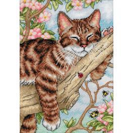 Cross stitch kit - Napping kitten