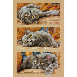 Cross stitch kit - Max the Cat