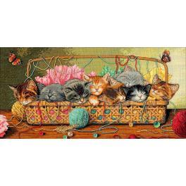 Cross stitch kit - Kitty litter