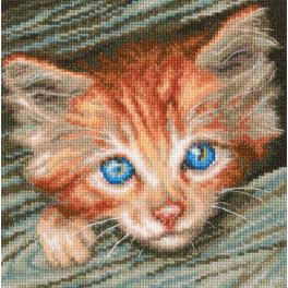 Cross stitch set - Fluffy observer