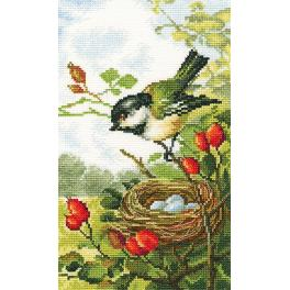 Cross stitch kit - On a briar branch