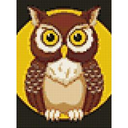 Diamond painting kit - Night owl