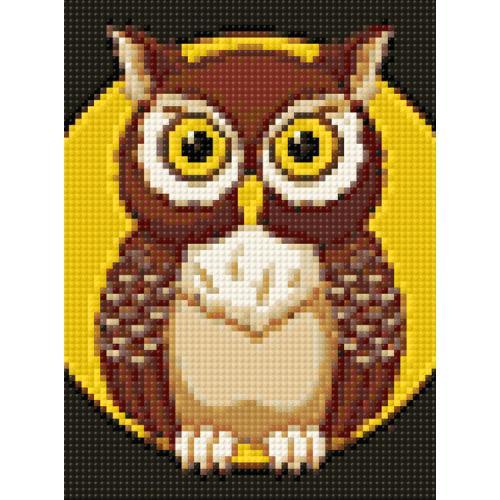 WD308 Diamond painting kit - Night owl