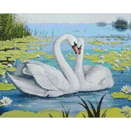 Diamond painting kit - Swan song