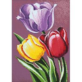 Diamond painting kit - Tulip aroma