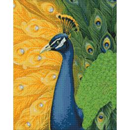 Diamond painting kit - Peacock