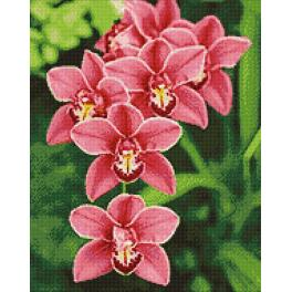 WD033 Diamond painting kit - Orchid