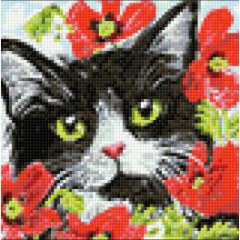 Diamond painting kit - Cat in flowers